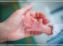 为出生就进NICU的双胞胎新生儿,我必须告诉你这5个通关秘籍