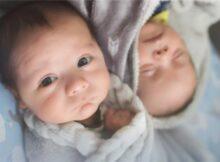 《双胞胎睡眠圣经》解读07:5月龄的双胞胎睡眠特点