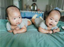 吾家有双胞胎儿子初长成